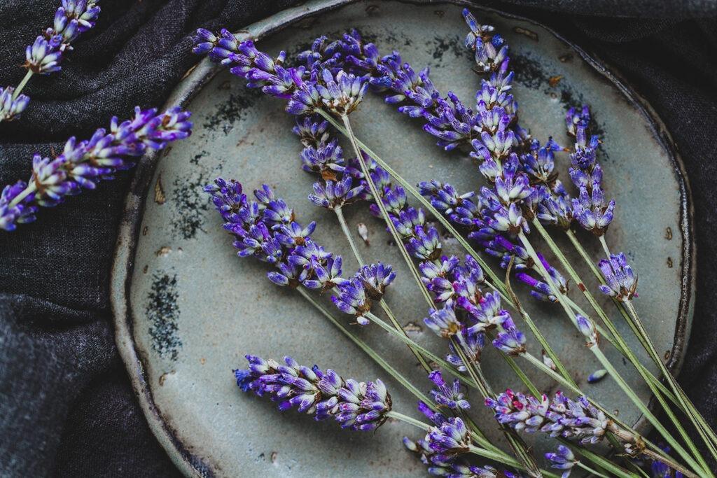 flor de lavanda receta